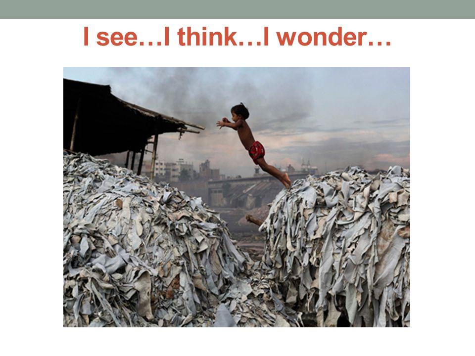 I see…I think…I wonder…