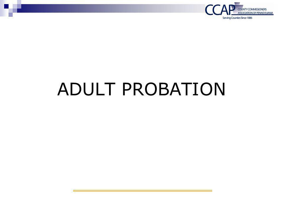 ADULT PROBATION