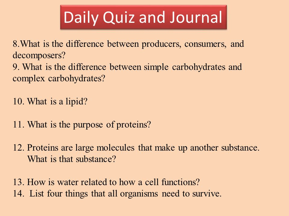 Daily Quiz and Journal Section 2 89.