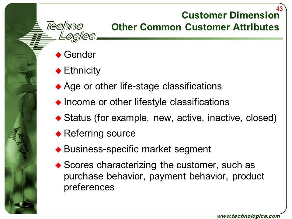 43 www.technologica.com Customer Dimension Other Common Customer Attributes  Gender  Ethnicity  Age or other life-stage classifications  Income or
