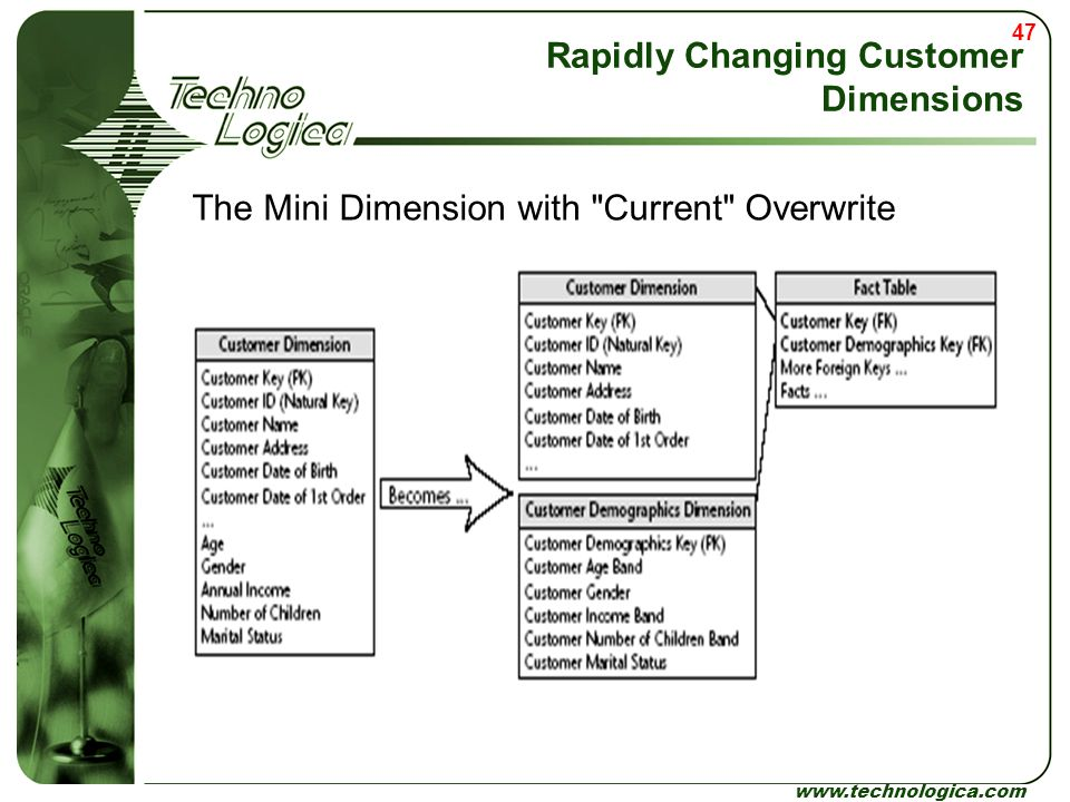 47 www.technologica.com Rapidly Changing Customer Dimensions The Mini Dimension with