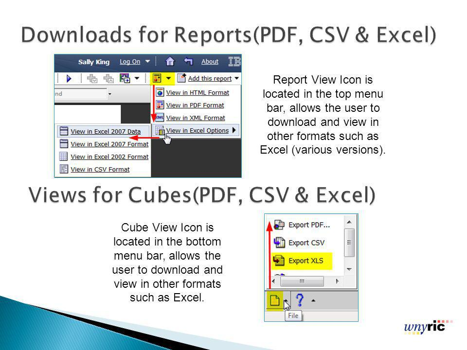 Report View Icon is located in the top menu bar, allows the user to download and view in other formats such as Excel (various versions).