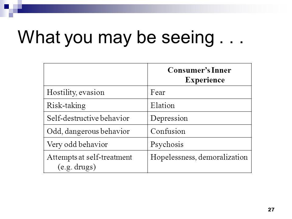 27 What you may be seeing... Consumer's Inner Experience Hostility, evasionFear Risk-takingElation Self-destructive behaviorDepression Odd, dangerous