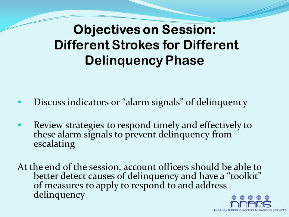 Objectives on Session: Different Strokes for Different Delinquency Phase  Discuss indicators or alarm signals of delinquency  Review strategies to respond timely and effectively to these alarm signals to prevent delinquency from escalating At the end of the session, account officers should be able to better detect causes of delinquency and have a toolkit of measures to apply to respond to and address delinquency