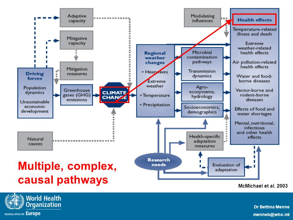 Dr Bettina Menne menneb@who.int McMichael et al. 2003 Multiple, complex, causal pathways