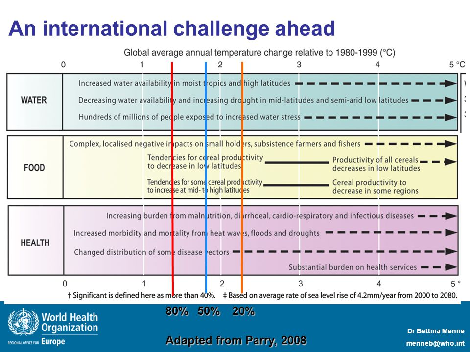 Dr Bettina Menne menneb@who.int 20%50%80% Adapted from Parry, 2008 An international challenge ahead