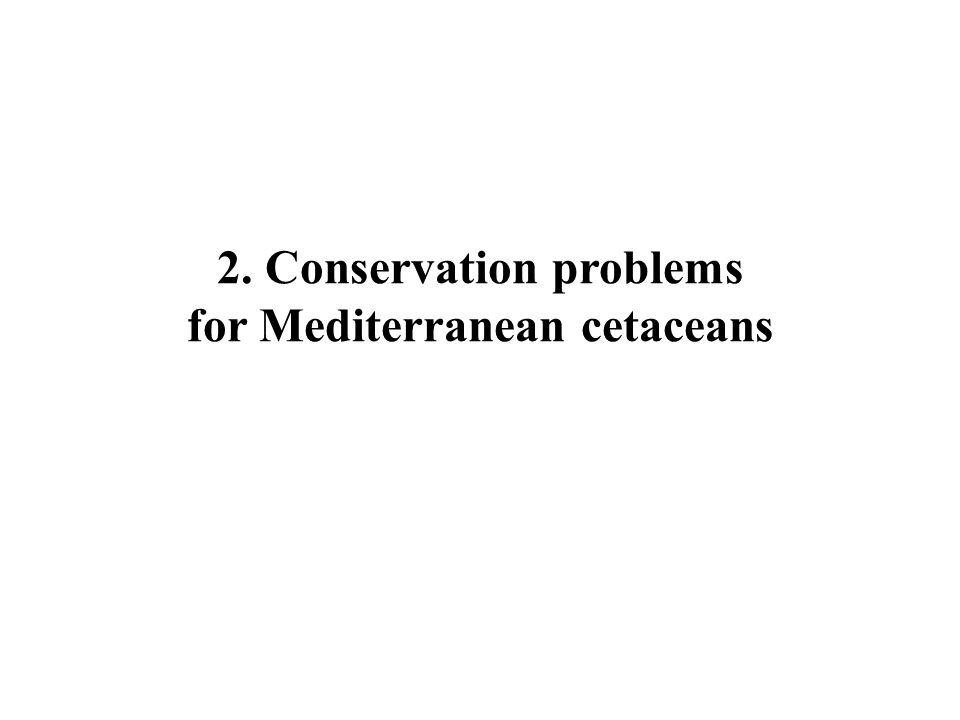 2.Conservation problems for Mediterranean cetaceans