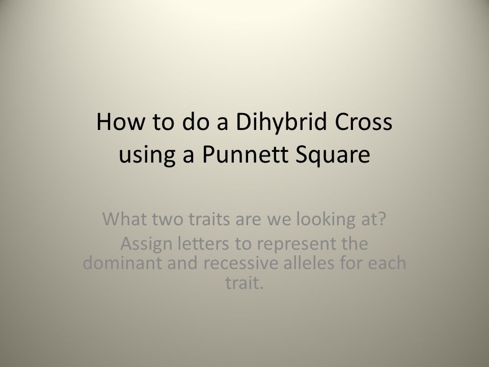 How to do a Dihybrid Cross using a Punnett Square What two traits are we looking at? Assign letters to represent the dominant and recessive alleles fo