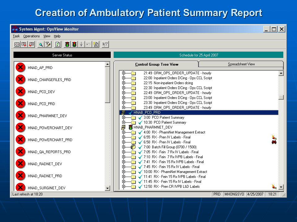 Creation of Ambulatory Patient Summary Report