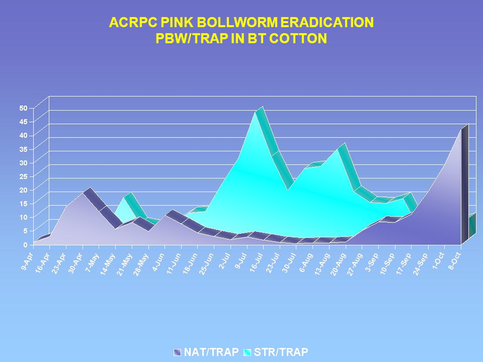 ACRPC PINK BOLLWORM ERADICATION PBW/TRAP IN BT COTTON