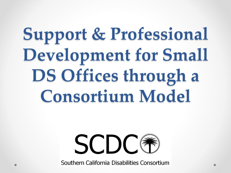 Support & Professional Development for Small DS Offices through a Consortium Model