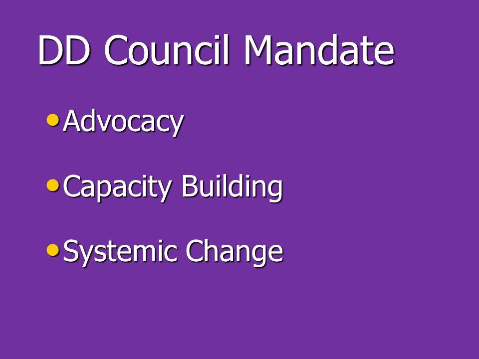 DD Council Mandate Advocacy Advocacy Capacity Building Capacity Building Systemic Change Systemic Change