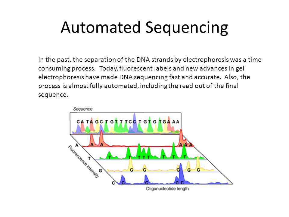 15Introduction 1.0 Top 10 Future Challenges for Bioinformatics Precise, predictive model of transcription initiation and termination: ability to predict where and when transcription will occur in a genome Precise, predictive model of RNA splicing/alternative splicing: ability to predict the splicing pattern of any primary transcript in any tissue Precise, quantitative models of signal transduction pathways: ability to predict cellular responses to external stimuli Determining effective protein:DNA, protein:RNA and protein:protein recognition codes Accurate ab initio protein structure prediction Rational design of small molecule inhibitors of proteins Mechanistic understanding of protein evolution: understanding exactly how new protein functions evolve Mechanistic understanding of speciation: molecular details of how speciation occurs Continued development of effective gene ontologies - systematic ways to describe the functions of any gene or protein Education: development of appropriate bioinformatics curricula for secondary, undergraduate and graduate education