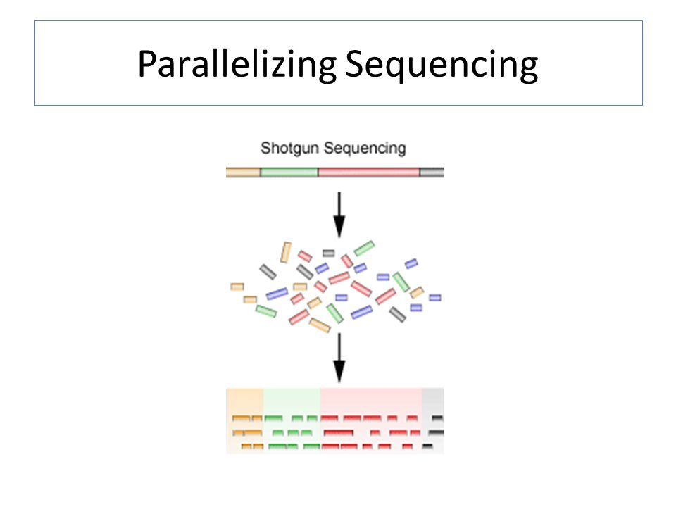 Parallelizing Sequencing