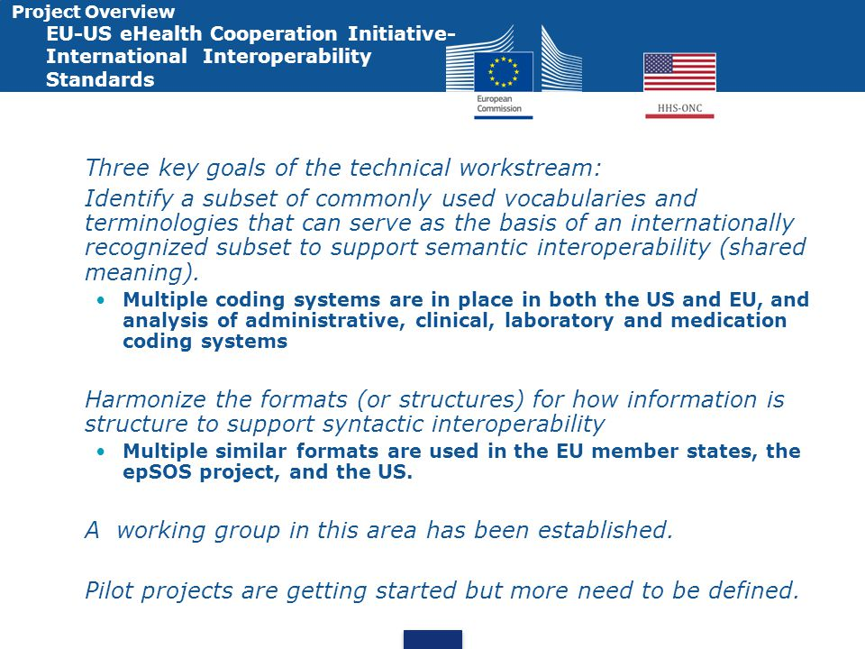 Project Overview EU-US eHealth Cooperation Initiative- International Interoperability Standards Three key goals of the technical workstream: Identify a subset of commonly used vocabularies and terminologies that can serve as the basis of an internationally recognized subset to support semantic interoperability (shared meaning).