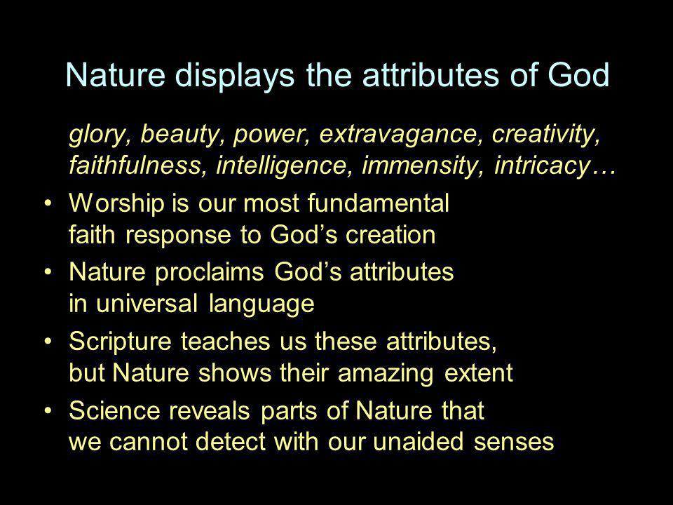 Nature displays the attributes of God glory, beauty, power, extravagance, creativity, faithfulness, intelligence, immensity, intricacy… Worship is our