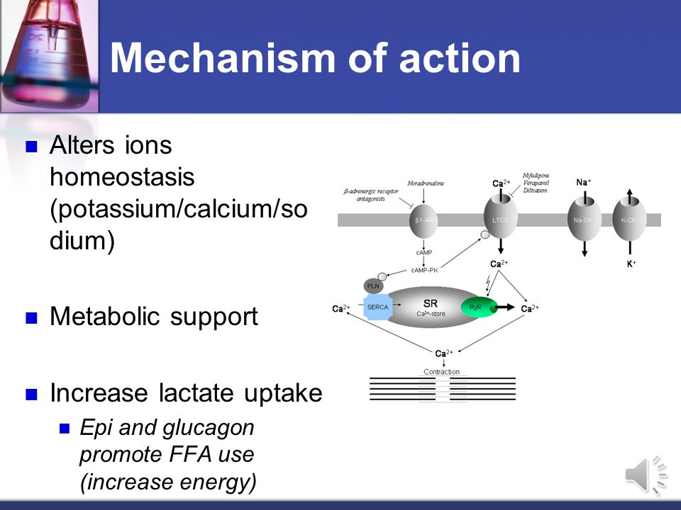 Background Altered myocardial physiology Hyperglycemia (pancreas/liver) Altered myocardial substrate use Inhibition of lactate oxidation