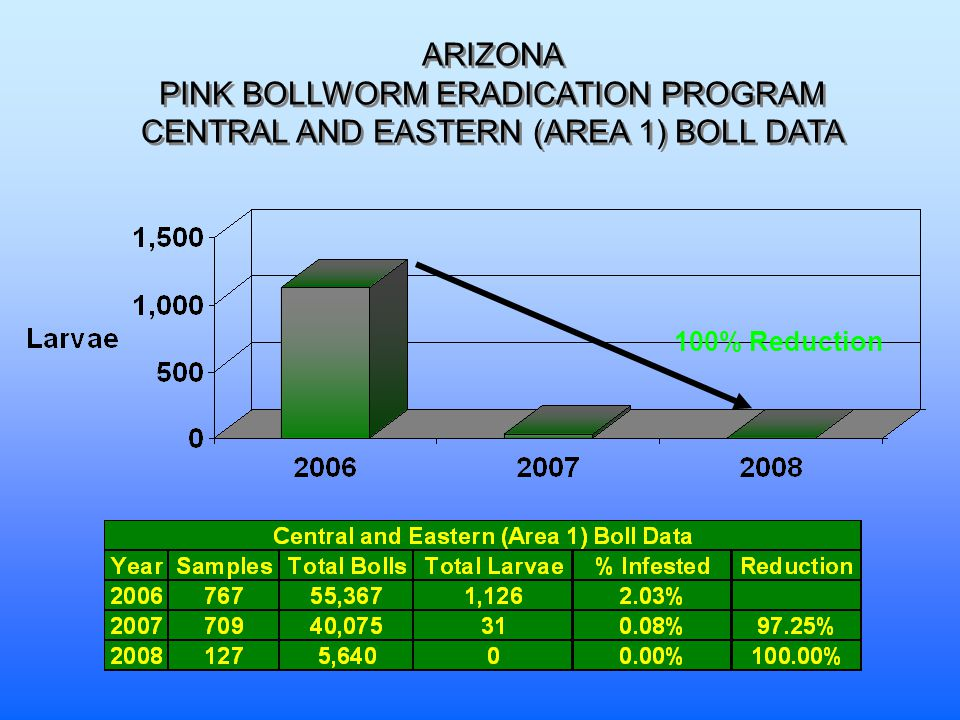 ARIZONA PINK BOLLWORM ERADICATION PROGRAM CENTRAL AND EASTERN (AREA 1) BOLL DATA 100% Reduction