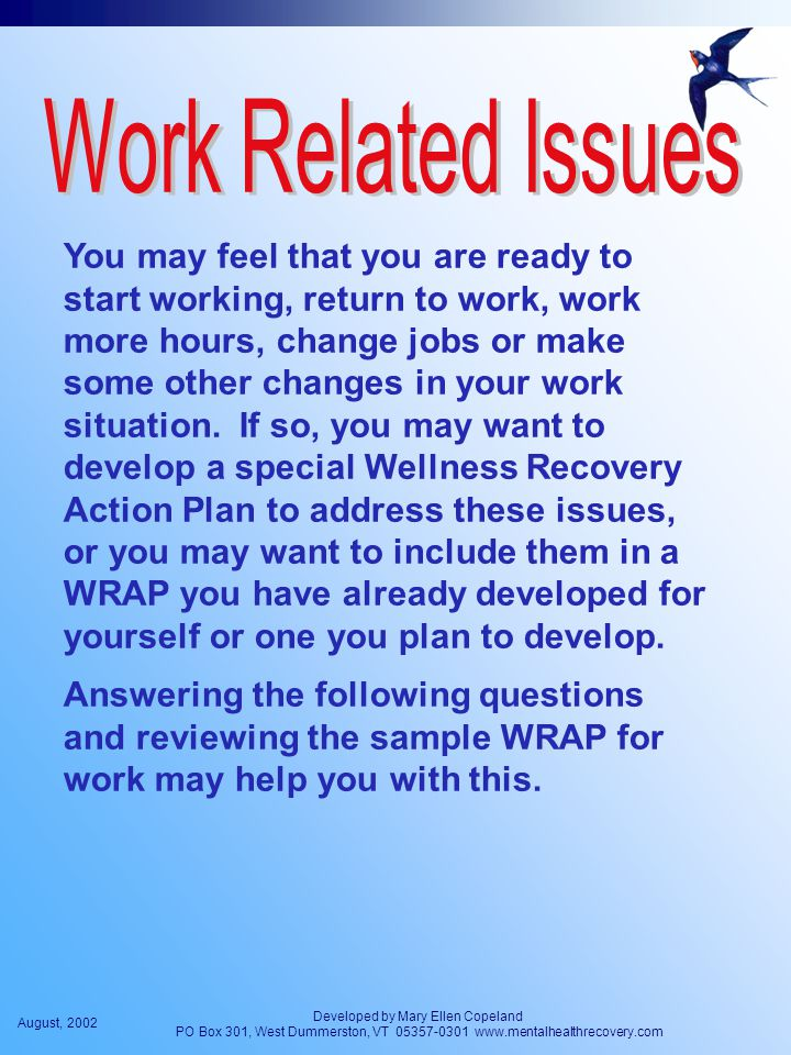 August, 2002 Developed by Mary Ellen Copeland PO Box 301, West Dummerston, VT 05357-0301 www.mentalhealthrecovery.com You may feel that you are ready to start working, return to work, work more hours, change jobs or make some other changes in your work situation.