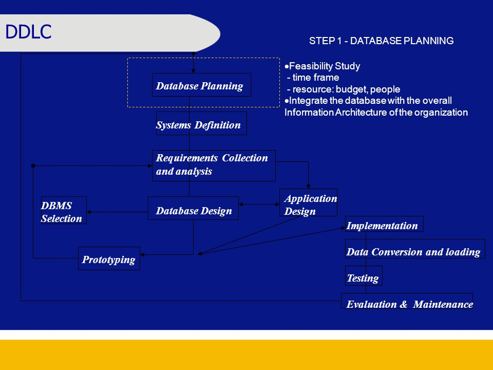 Database Planning Systems Definition Requirements Collection and analysis Database Design DBMS Selection Application Design Implementation Data Conversion and loading Testing Evaluation & Maintenance Prototyping DDLC STEP 1 - DATABASE PLANNING  Feasibility Study - time frame - resource: budget, people  Integrate the database with the overall Information Architecture of the organization