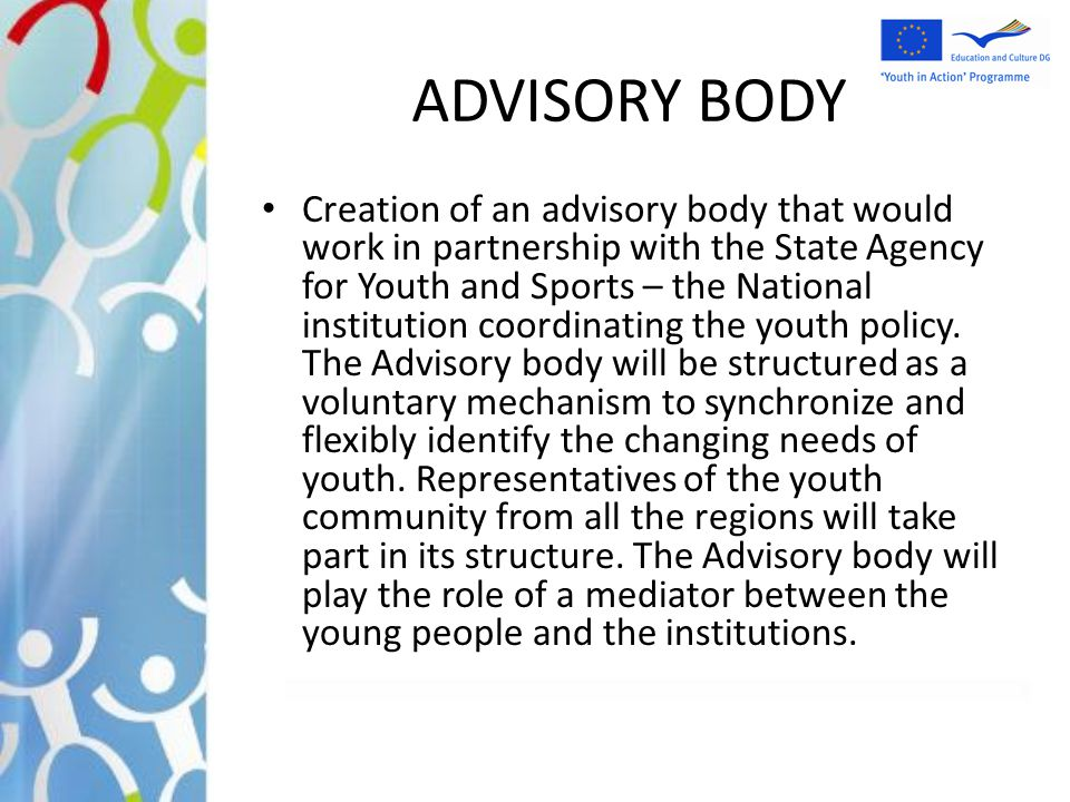 ADVISORY BODY Creation of an advisory body that would work in partnership with the State Agency for Youth and Sports – the National institution coordi