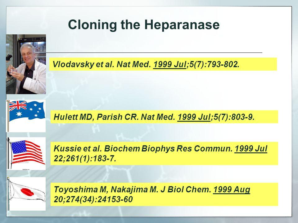 Vlodavsky et al. Nat Med. 1999 Jul;5(7):793-802.