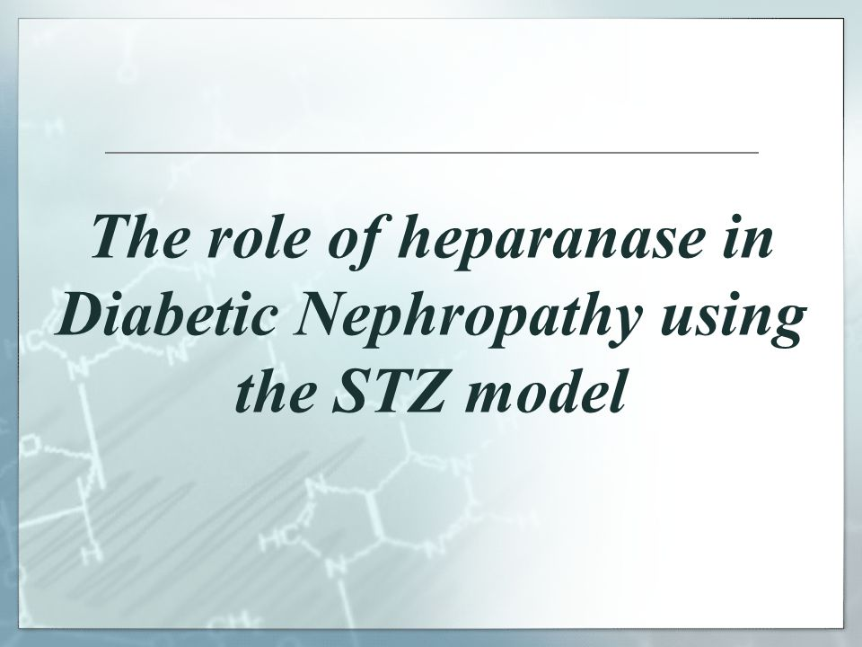 The role of heparanase in Diabetic Nephropathy using the STZ model