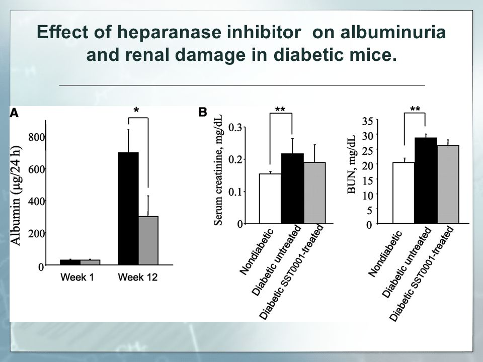 Effect of heparanase inhibitor on albuminuria and renal damage in diabetic mice.