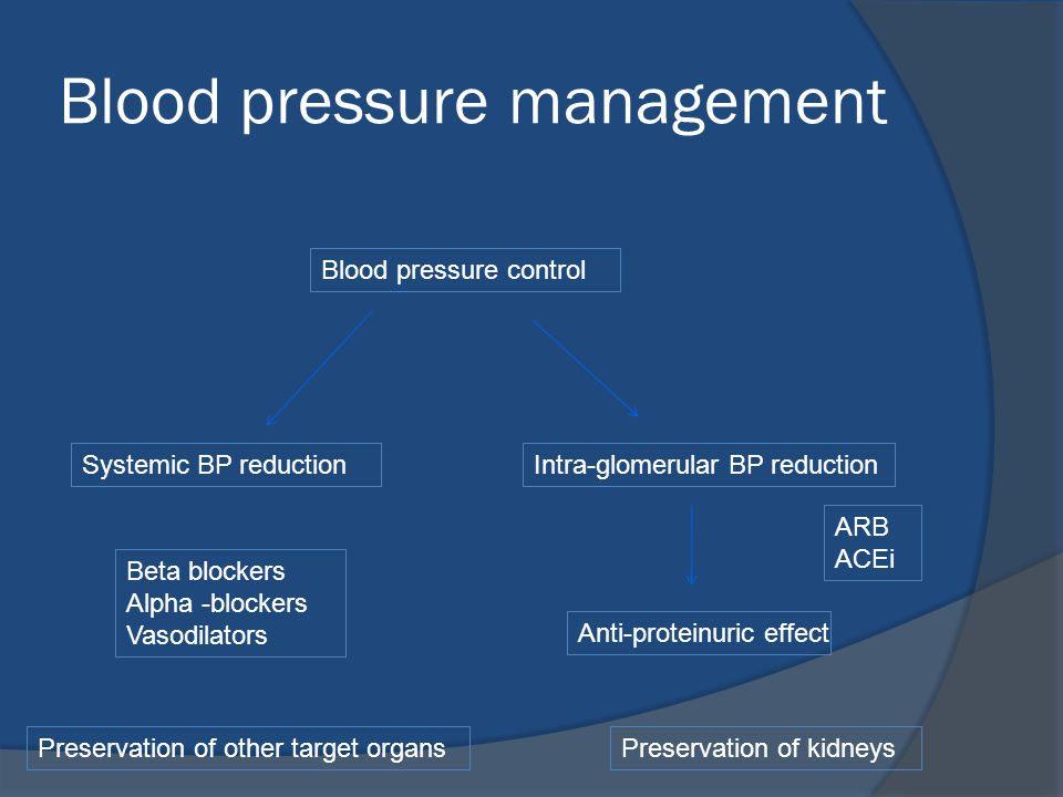 Blood pressure management Systemic BP reductionIntra-glomerular BP reduction Anti-proteinuric effect Blood pressure control Beta blockers Alpha -block