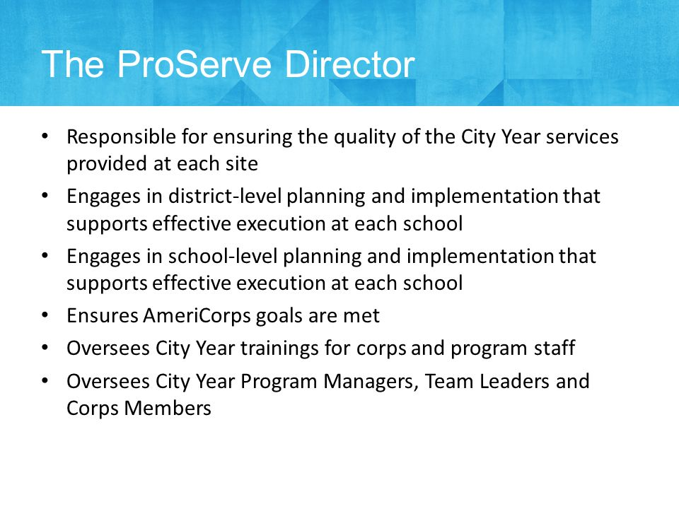Standard Team Structures National Exec Team DNIST Local Exec Team Local Ops Team School Team *in applicable cities