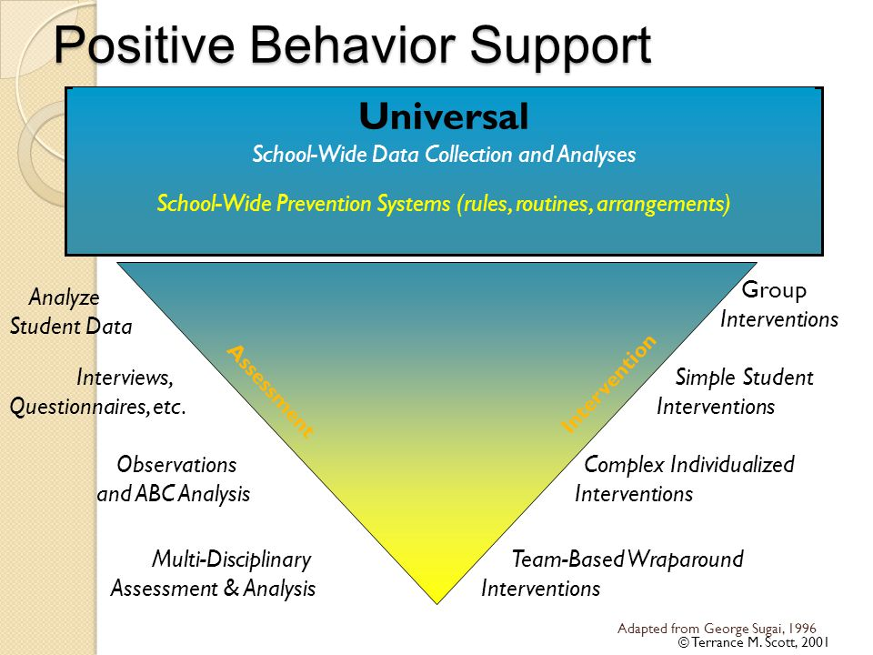 Positive Behavior Support Targeted Intensive Adapted from George Sugai, 1996 © Terrance M. Scott, 2001 Universal School-Wide Data Collection and Analy