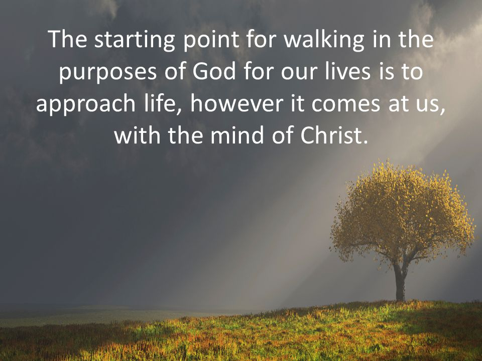The starting point for walking in the purposes of God for our lives is to approach life, however it comes at us, with the mind of Christ.