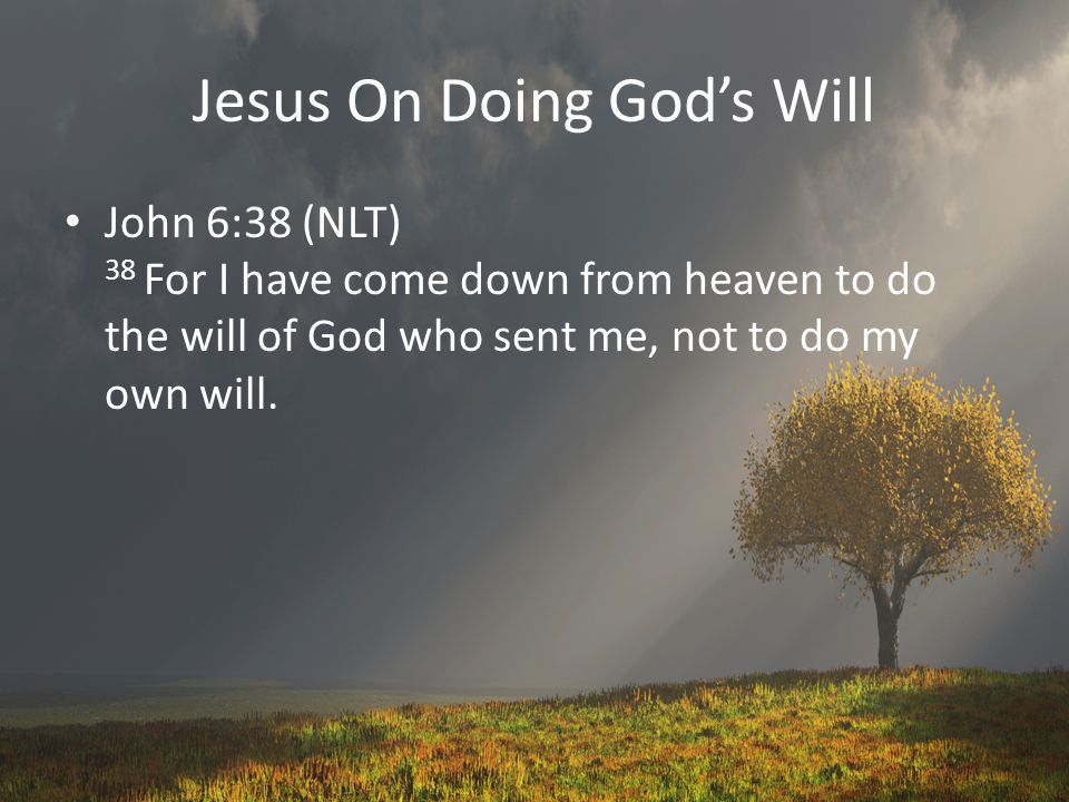 Jesus On Doing God's Will John 6:38 (NLT) 38 For I have come down from heaven to do the will of God who sent me, not to do my own will.