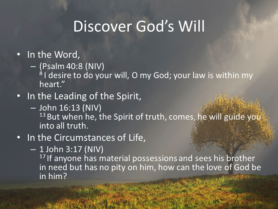 Discover God's Will In the Word, – (Psalm 40:8 (NIV) 8 I desire to do your will, O my God; your law is within my heart. In the Leading of the Spirit, – John 16:13 (NIV) 13 But when he, the Spirit of truth, comes, he will guide you into all truth.