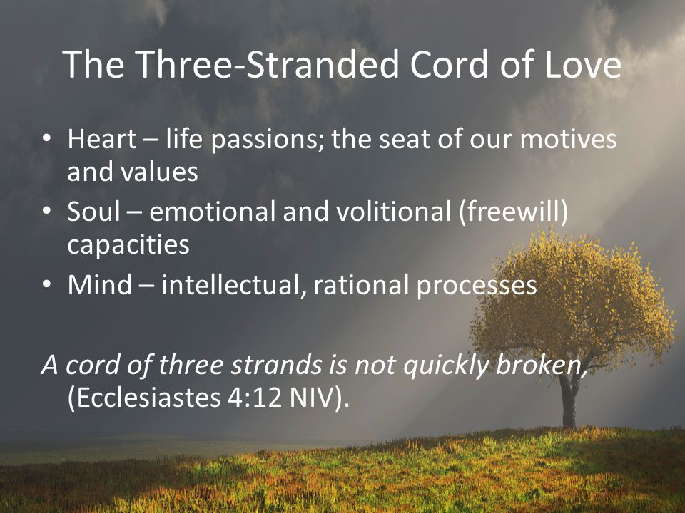 The Three-Stranded Cord of Love Heart – life passions; the seat of our motives and values Soul – emotional and volitional (freewill) capacities Mind –