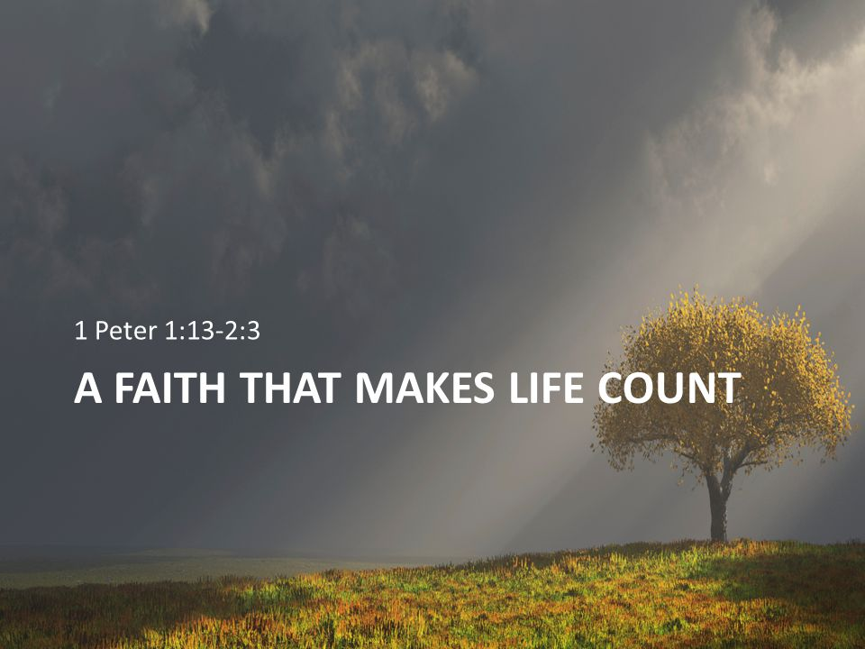 The High Cost of Sin Proverbs 13:15 (NKJV) 15 Good understanding gains favor, But the way of the unfaithful is hard.