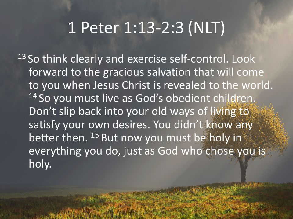 The From and To of Holiness Come away from… all evil behavior deceit, hypocrisy, jealousy, all unkind speech (1 Peter 2:1) Give yourself to… Craving spiritual nourishment Pursuing your new character goodness; Knowledge self-control Perseverance Godliness brotherly love (2 Peter 1:5-7).