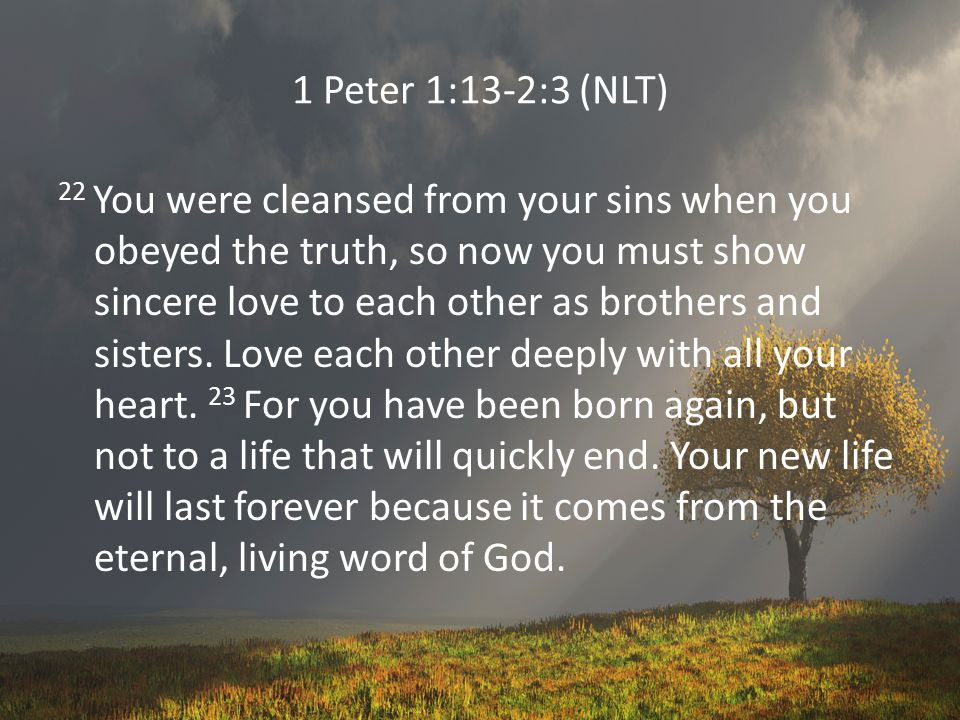 1 Peter 1:13-2:3 (NLT) 22 You were cleansed from your sins when you obeyed the truth, so now you must show sincere love to each other as brothers and