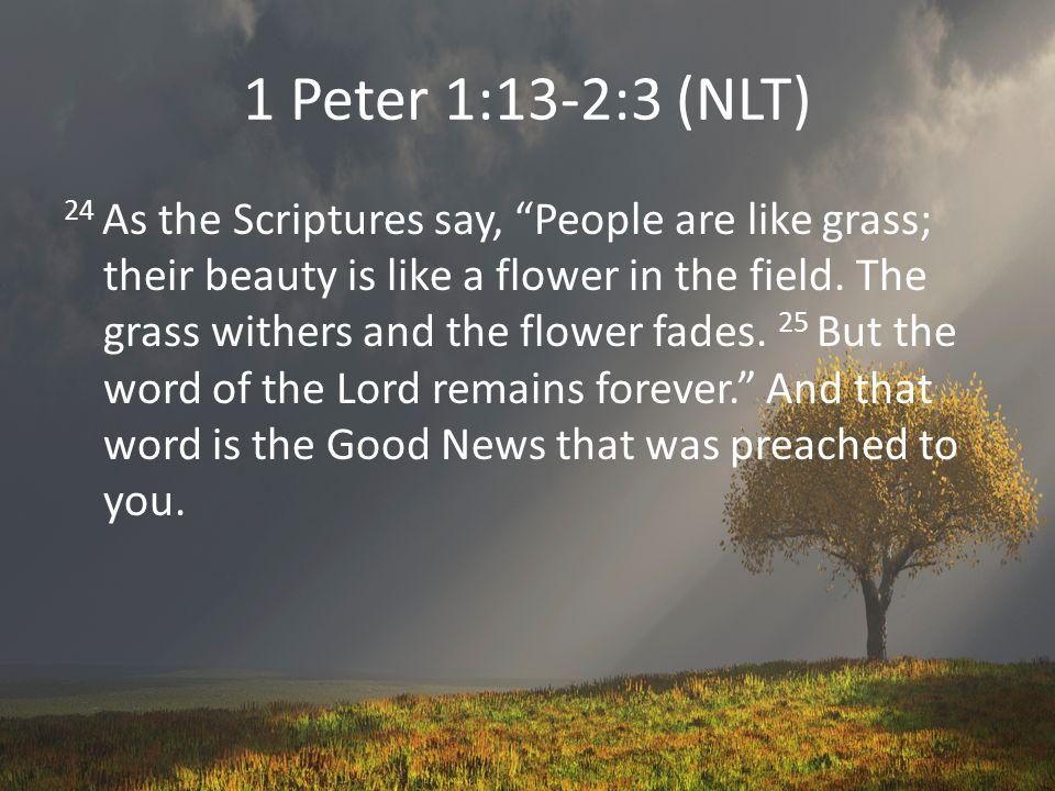 1 Peter 1:13-2:3 (NLT) 1 So get rid of all evil behavior.