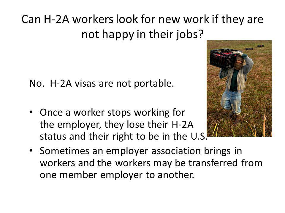 Can H-2A workers look for new work if they are not happy in their jobs.