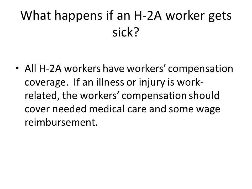 What happens if an H-2A worker gets sick. All H-2A workers have workers' compensation coverage.
