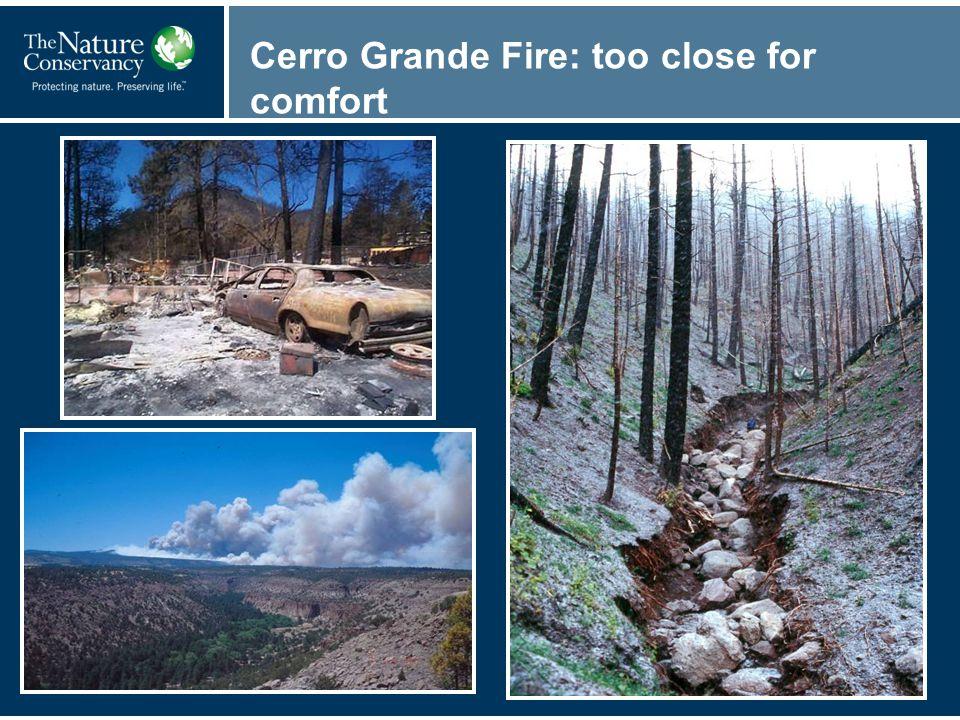 Cerro Grande Fire: too close for comfort