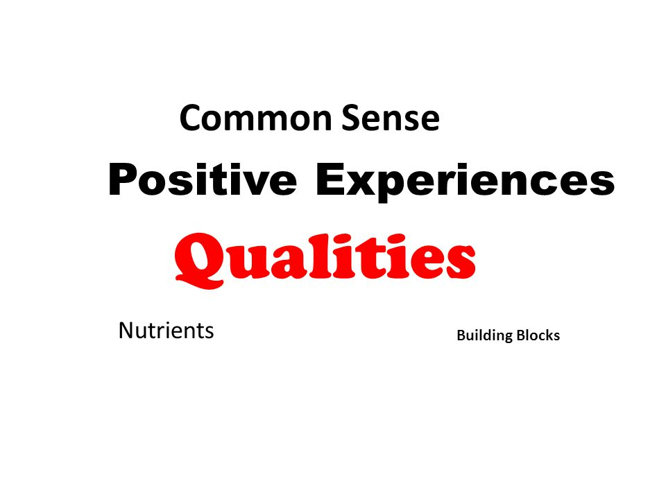 Building Blocks Nutrients Common Sense Positive Experiences Qualities