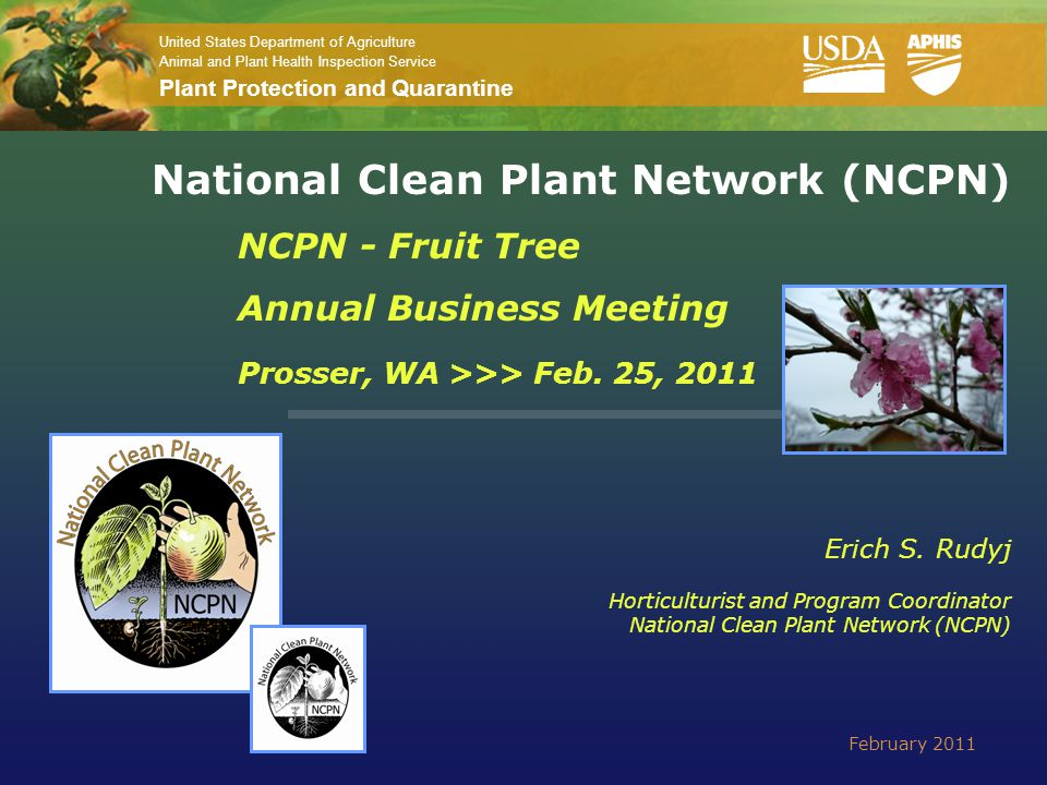 United States Department of Agriculture Animal and Plant Health Inspection Service Plant Protection and Quarantine National Clean Plant Network (NCPN)
