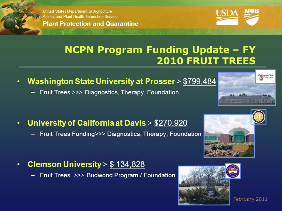 United States Department of Agriculture Animal and Plant Health Inspection Service Plant Protection and Quarantine NCPN Program Funding Update – FY 2010 FRUIT TREES Washington State University at Prosser > $799,484 –Fruit Trees >>> Diagnostics, Therapy, Foundation University of California at Davis > $270,920 –Fruit Trees Funding>>> Diagnostics, Therapy, Foundation Clemson University > $ 134,828 –Fruit Trees >>> Budwood Program / Foundation February 2011