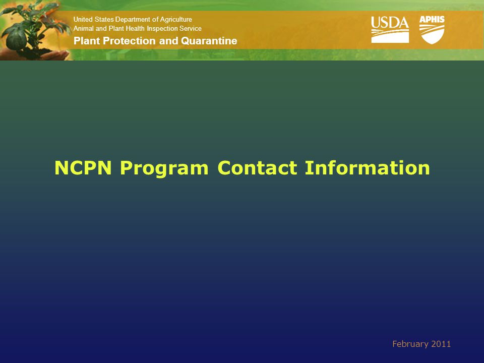 United States Department of Agriculture Animal and Plant Health Inspection Service Plant Protection and Quarantine NCPN Program Contact Information Fe