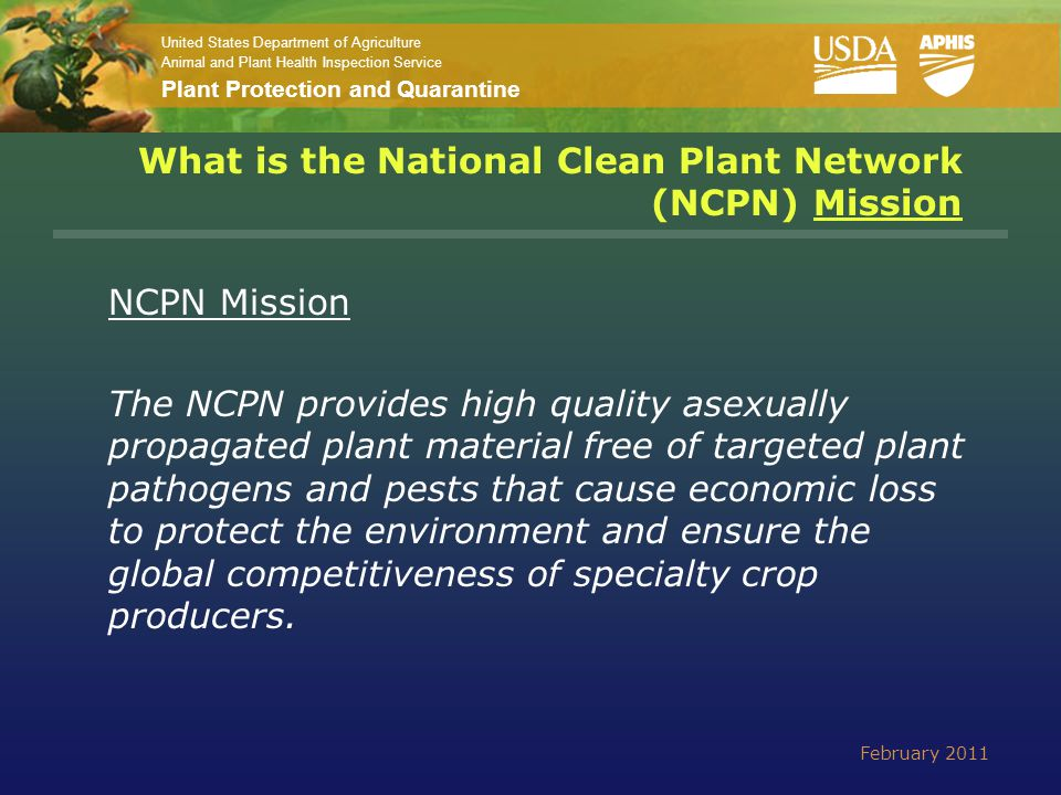United States Department of Agriculture Animal and Plant Health Inspection Service Plant Protection and Quarantine Key NCPN Principle NCPN identifies and supports a small but appropriate number of stakeholder selected, nationally focused clean plant centers that serve as centralized, cost effective 'HUBS' to diagnose and 'clean' material and provide starter material to industry and the States IMPORTANT February 2011