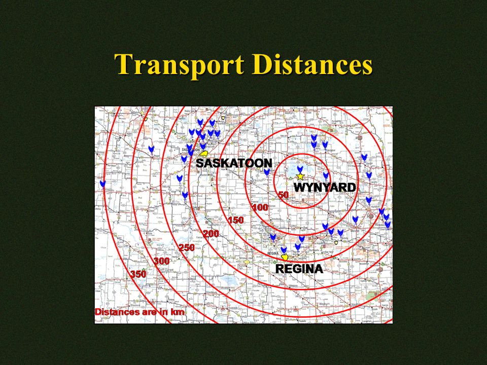 Transport Distances