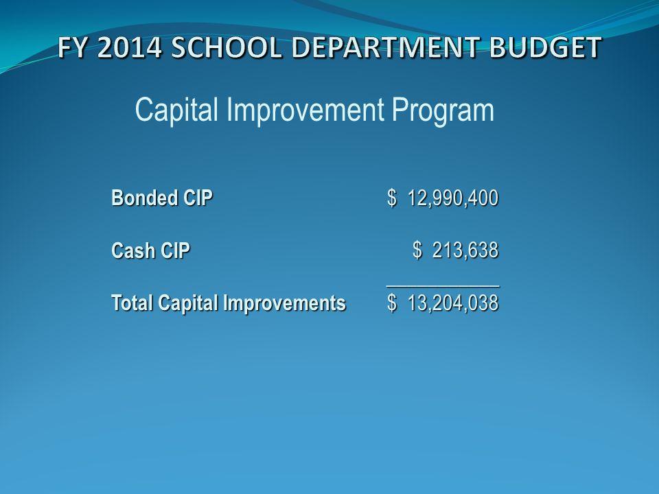 Capital Improvement Program $ 12,990,400 $ 213,638 ___________ $ 13,204,038 Bonded CIP Cash CIP Total Capital Improvements