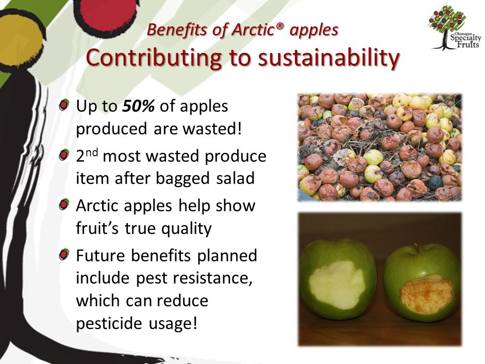 Benefits of Arctic® apples Contributing to sustainability Up to 50% of apples produced are wasted! 2 nd most wasted produce item after bagged salad Ar